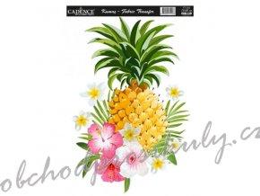 nazehlovaci obrazek 17x25 cm ananas