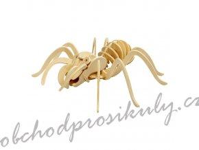3D dřevěný model pavouk