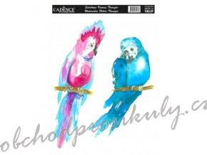 nazehlovaci nalepka 25x35 cm akvarelova papousci
