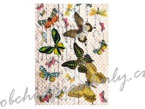 ryzovy papir a4 motylci v pismu