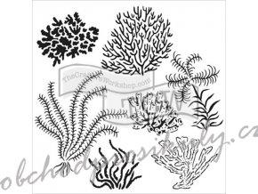 sablona 12 x12 30 5 x 30 5 cm gulf coast flora