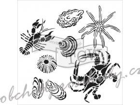 sablona 12 x12 30 5 x 30 5 cm gulf coast creatures