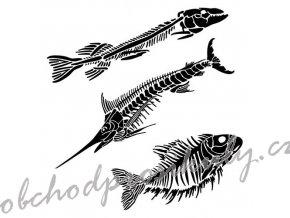 sablona 12 x12 30 5 x 30 5 cm fish fossils