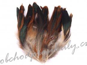 Slepičí peří délka 6-20 cm