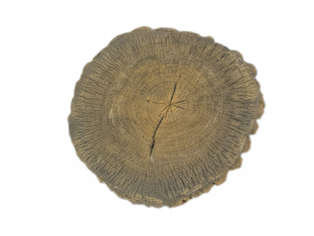 Dřevěný šlapák