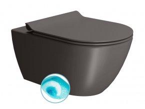 PURA WC závěsné, splachování SWIRLFLUSH, 55x36 cm, bistro dual-mat