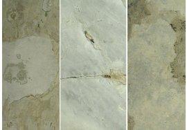 Přírodní ohebný kámen Flexi-Slate - IVORY