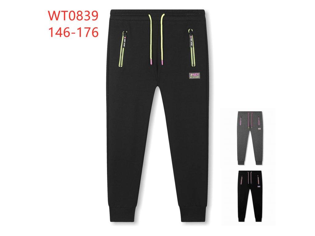 WT0839