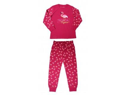 S2166 dívčí bavlněné pyžamo Wolf