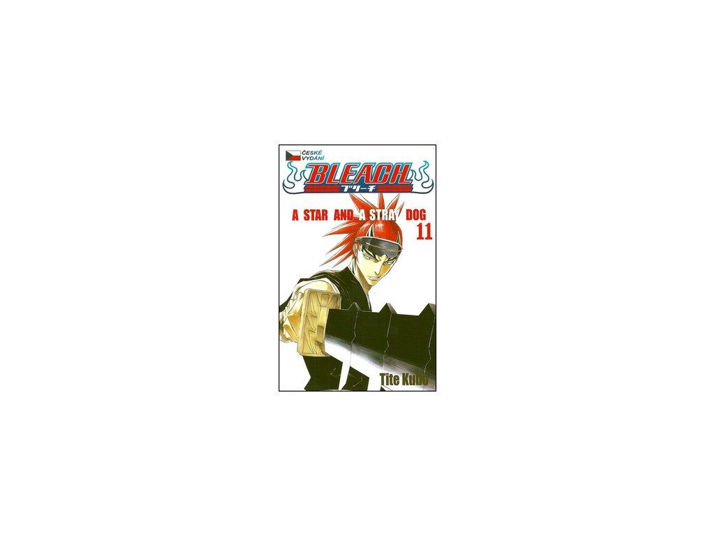 Bleach 11