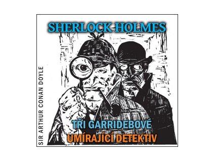 Sherlock Holmes Tři Garridebové, Umírající detektiv