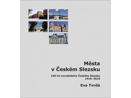 Města v Českém Slezsku