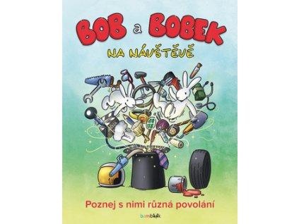Bob a Bobek na návštěvě