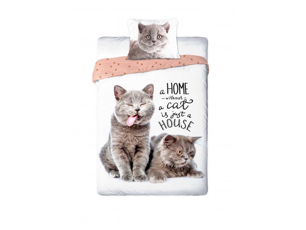 Obliečky BAVLNA Fototisk 140x200 - Dve strieborné mačky