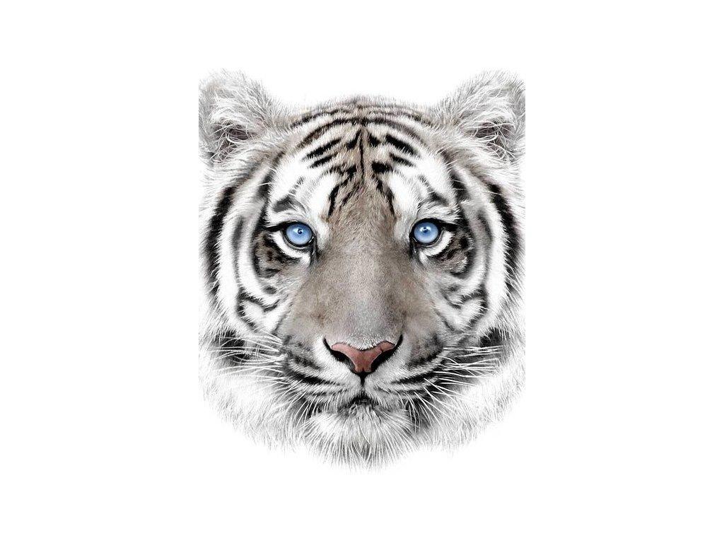 Deka mikroflanel s digitálnou tlačou 120x150 - Biely tiger