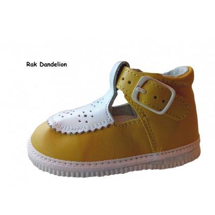 Kopitarna dámska obuv 2732