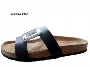 Grunland SARA 2466
