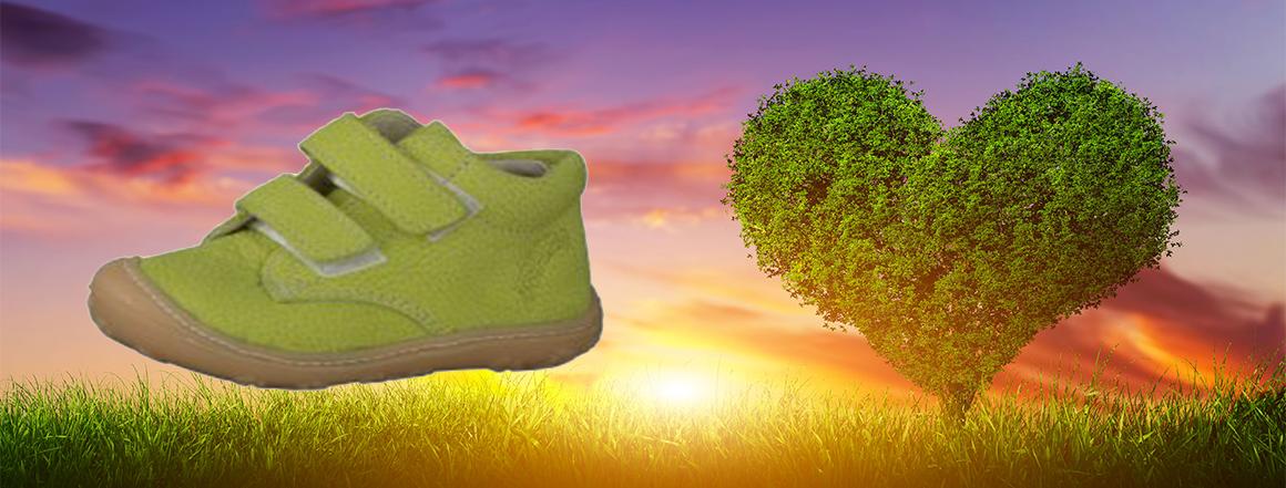RICOSTA - zelené srdce