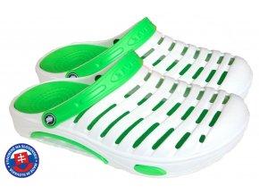 A 1003white green.svkA.