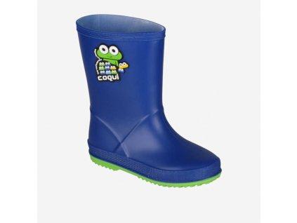 6389 coqui 8505 rainy blue lime 001