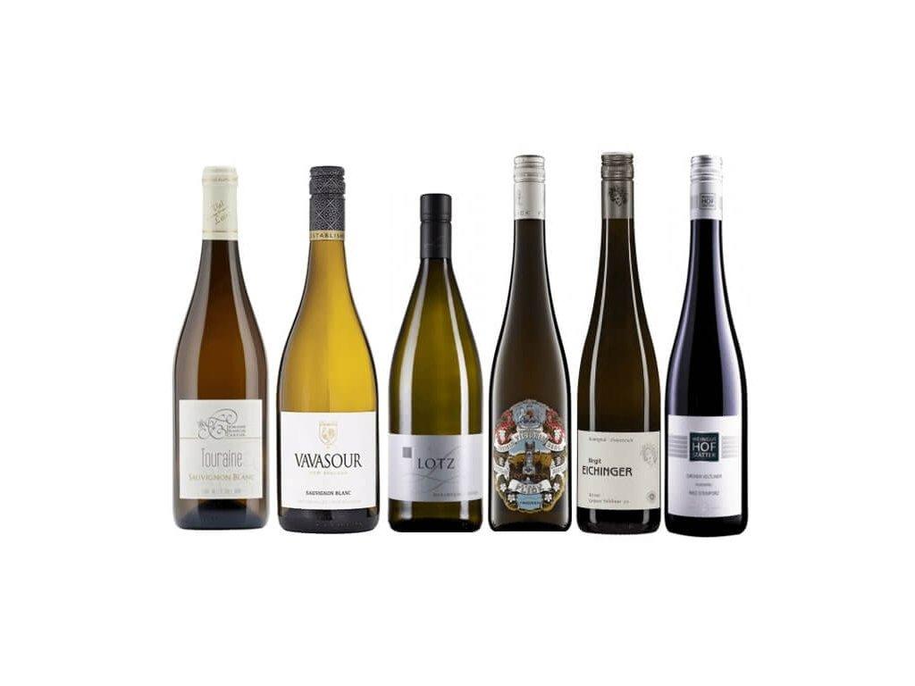 Jak poznat kvalitu u bílého vína 2020 05 (1)