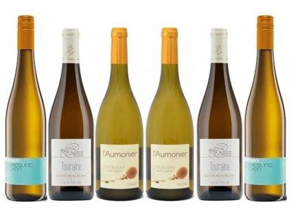 Srovnání ročníků bílá vína Riesling, Sauvignon OceněnáVína CZ (1)