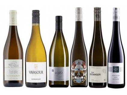 Jak poznat kvalitu u bílého vína 2020 11 (1)