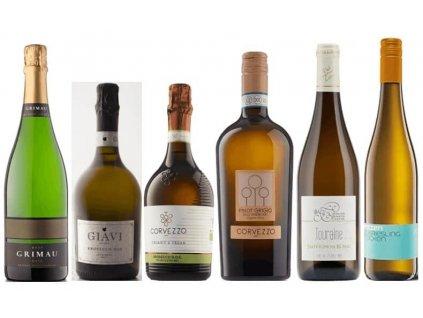 Jarní svěží vína s bublinkami 2021 (1)