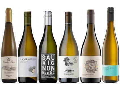 Podzimní vína bílá OceněnáVína CZ (1)