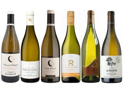 Chardonnay poznejte vliv polohy a stylu 2019