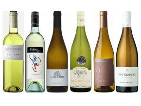 Óda na Chardonnay - objevte jeho rozmanitost