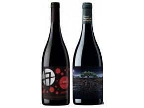 Objevte jaký má vliv stáří vinic a poloha na chuť španělské Grenache Navarra vs Priorat