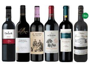 Cabernet Sauvignon & Merlot poznejte vliv polohy a stylu