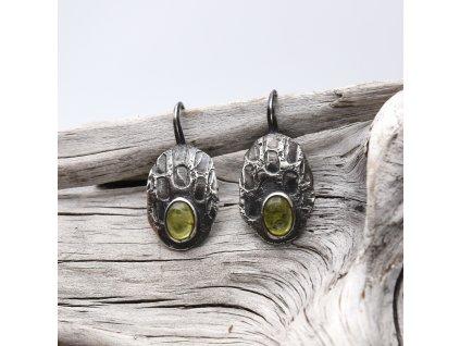 Krovky vesmírného brouka s olivínem