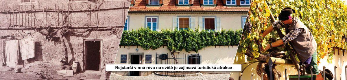 slovinske-regiony-maribor