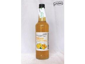Sirup Zázvor s citronem 500 ml Od Macháčků