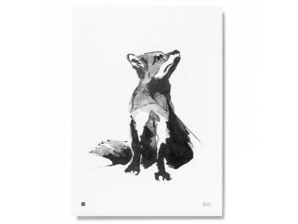 Plakát Red Fox 50x70