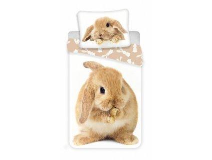 Obliečky fototlač Bunny brown 140x200, 70x90 cm
