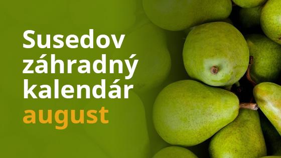 Susedov záhradný kalendár - august