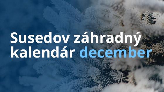 Susedov záhradný kalendár - december