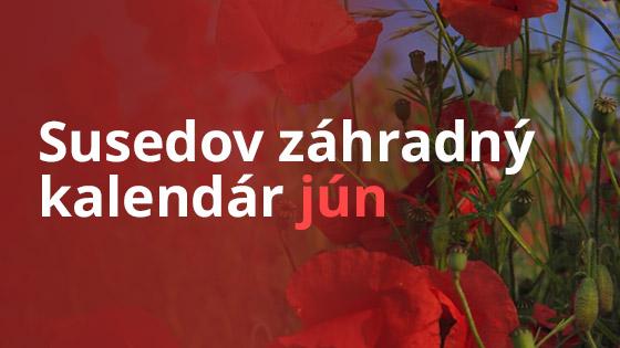 Susedov záhradný kalendár- jún