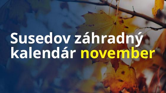 Susedov záhradný kalendár - november