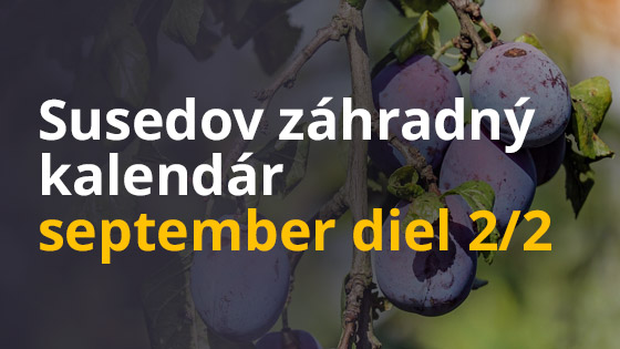 Susedov záhradný kalendár - september- diel 2/2