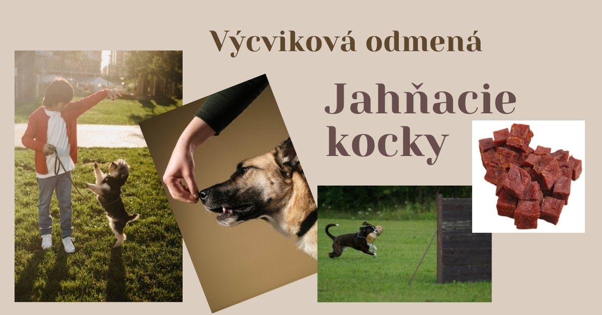 výcviková odmena pre psov a mačky