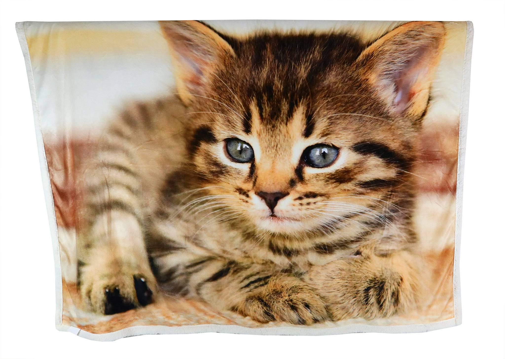 Hebká barančeková deka PRETTY2 s motívom mačiatka 130x160 cm BF