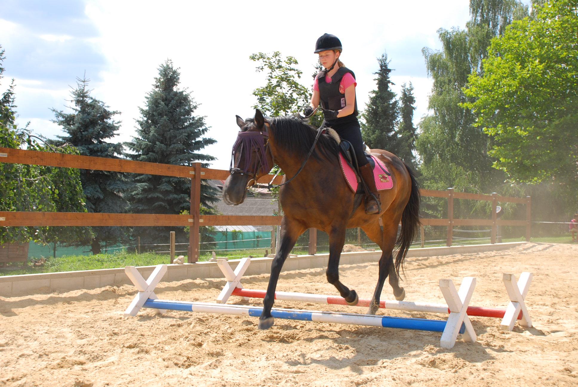 Letní prázdniny u koní