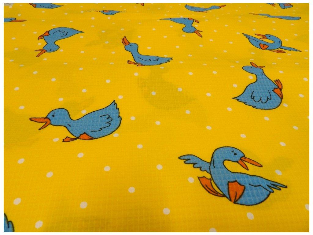 HAFLE 120 (211200-4-1 Modrá kachna)