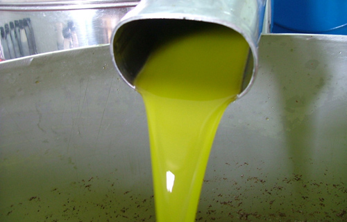 oil from press