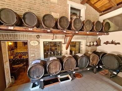 Jak se vyrábí pravé italské BALSAMICO DI MODENA