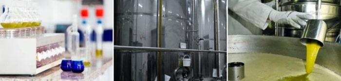 Výroba olivového oleje CUAC